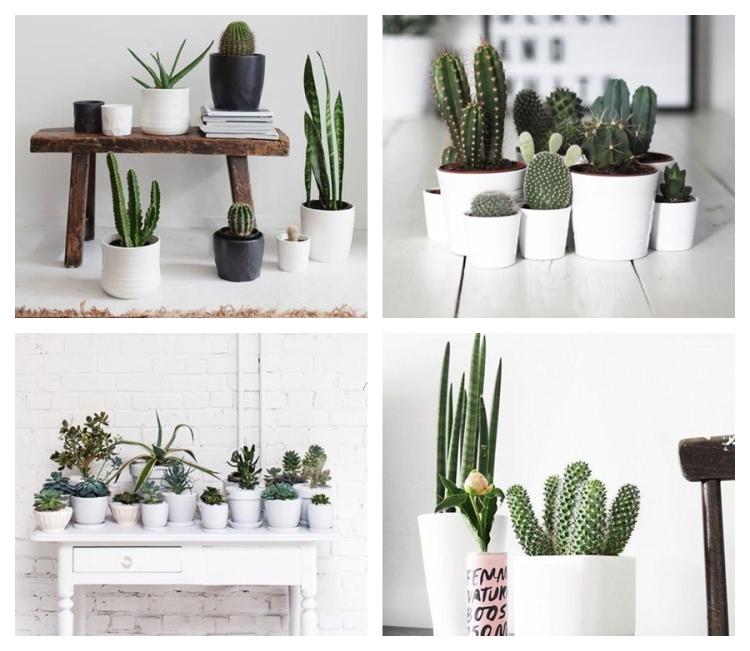 deco_cactus