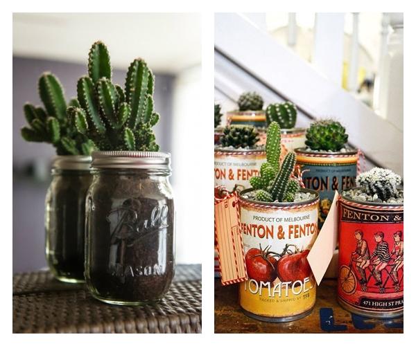 decorar_cactus