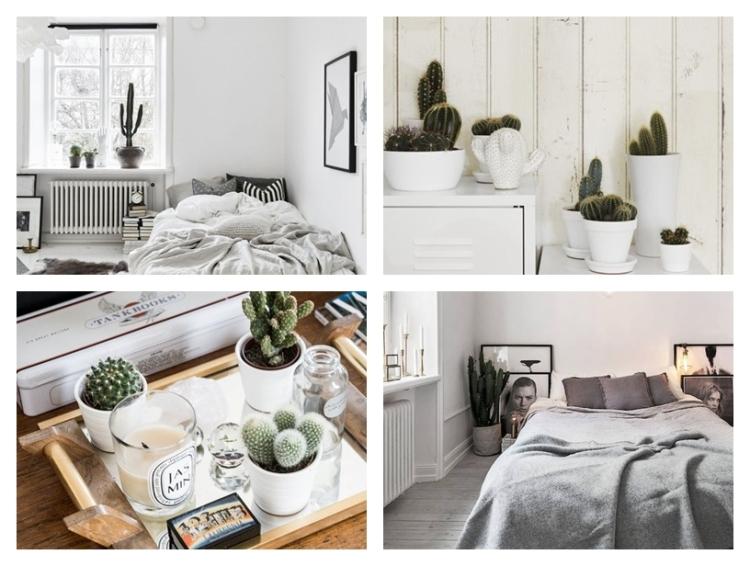 decorar_cactus_1